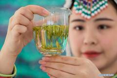 Tea competition held in Lishui, Zhejiang
