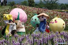 Animation carnival held at Jingshan Town of Hangzhou