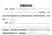 上海车展特斯拉女车主被起诉!原告是为了蹭热度,还是另有隐情?