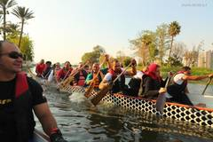 Dragon boat race held in Cairo to celebrate traditional Chinese Dragon Boat Festival