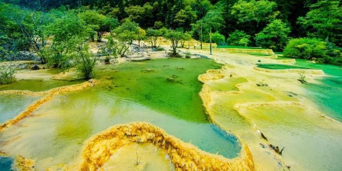 阿坝藏族羌族自治州文化体育和旅游局 松潘县人民政府 黄龙国家级风景