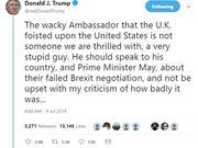 川普连发3条推特批英国驻美大使:非常愚蠢的家伙