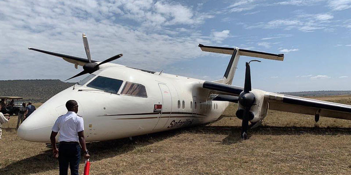 肯尼亞一架飛機降落時與角馬相撞 機上乘客未受傷