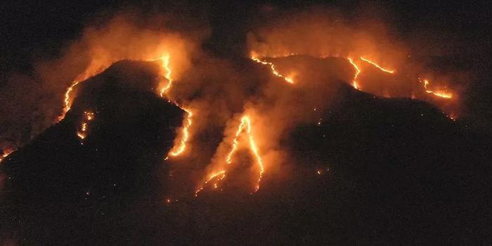 亚马孙雨林这场大火到底有多大?