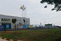 蒙牛海外市场备受青睐 中国乳品新国货横空出世