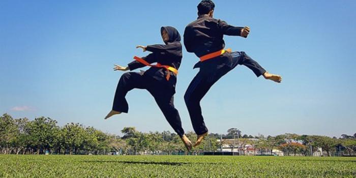 """马来西亚""""武术""""被列为人类非物质文化遗产"""