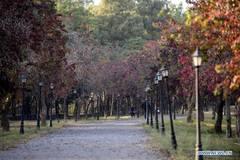 Autumn scenery of Fatima Jinnah Park in Pakistan