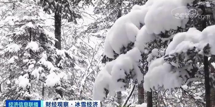 这种职业一个雪季狂赚超10万元 背后还有6800亿元大市场将至!