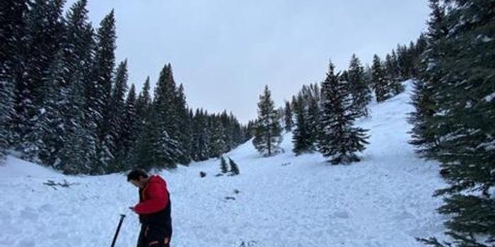 美国科罗拉多州滑雪者引发雪崩 2人不幸丧生