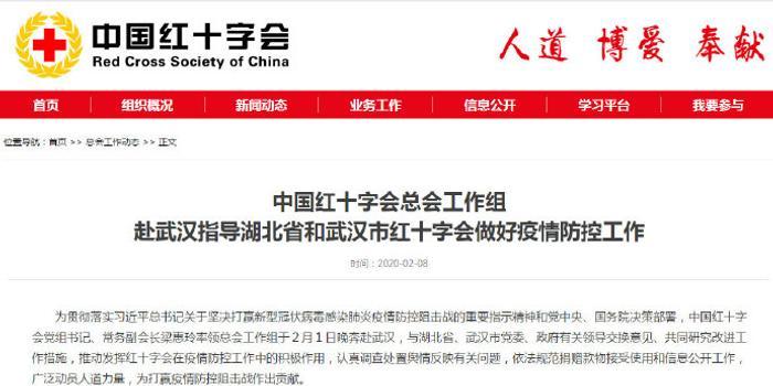 红十字会总会赴武汉工作组:坚决彻底整改