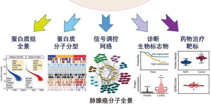 http://www.weixinrensheng.com/yangshengtang/2186544.html