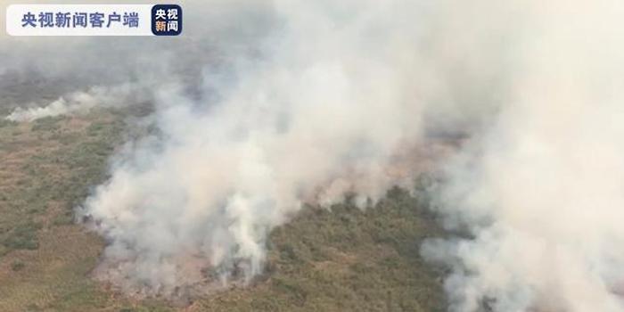巴西大火熄滅10天仍未熄滅 過火面積達4萬公頃