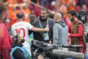 潘德夫欧洲杯上结束职业生涯