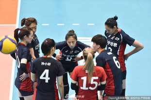 全运女排资格赛辽宁3-0浙江