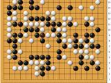 动图棋谱-女子名人战首轮 於之莹中盘胜贾罡璐