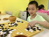 高清-专心致志乐弈棋!新浪围棋学院小棋手成长瞬间