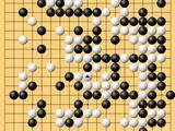 动图棋谱-智英赛柯洁胜王元均 朴廷桓胜芝野虎丸