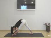 视频-美容瑜伽