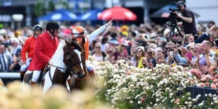 墨尔本杯赛马节:澳大利亚骑手夺冠