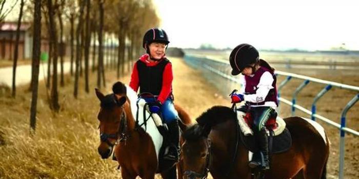 最新研究:骑马可以提高儿童学习能力
