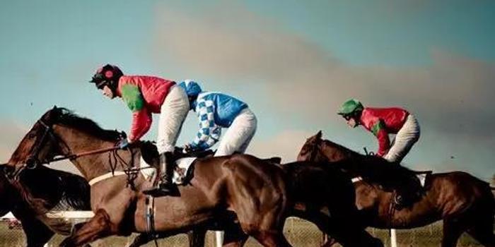 世界各国最强的马匹有哪些?