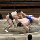 全球幾乎所有賽事陷入停擺 爲何UFC與相撲仍進行?