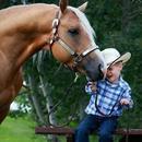 孩子与马相处过程中最重要的事情