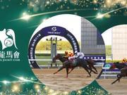 一日三捷,2018全国速度赛马锦标赛玉龙马业成最大赢家