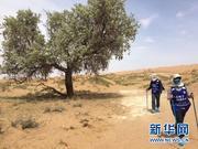 跑不完3㎞新华女记 是如何体验报道沙漠挑战赛的?