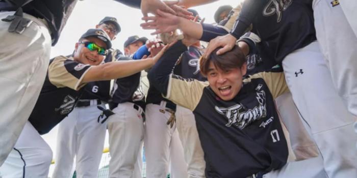 2019中国慢投垒球联赛分区赛落幕 总决赛一触即发