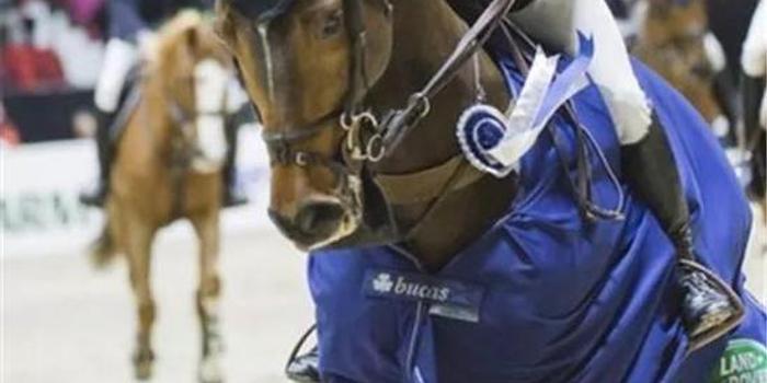 场地障碍世界杯赫尔辛基站165cm级别世界杯赛:英国骑手罗伯特·惠特克夺冠