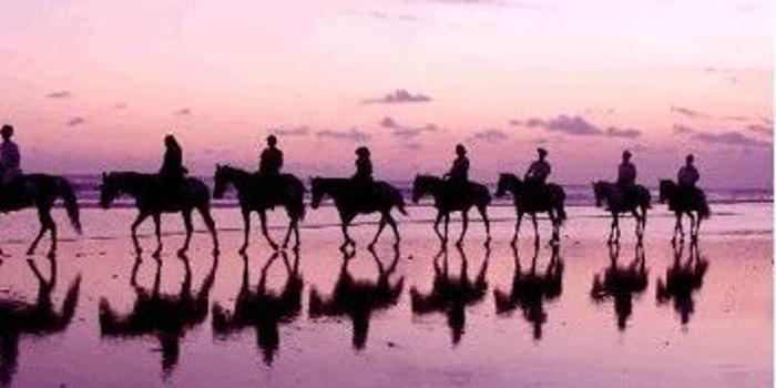 旅行怎能没有马?马术爱好者的东南亚正确打开方式