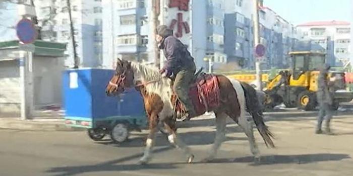 黑龍江齊齊哈爾男子騎馬上街買菜 被交警勸返