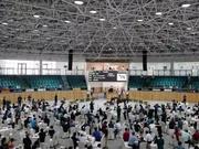 全球名驹佳驷云集 玉龙马业8月秋拍备受瞩目
