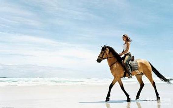 海南一女子v女子时摔伤骑马事故责任应由谁承QQ羽毛球图片