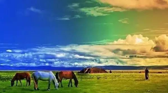 颜色斑斓的草原美景