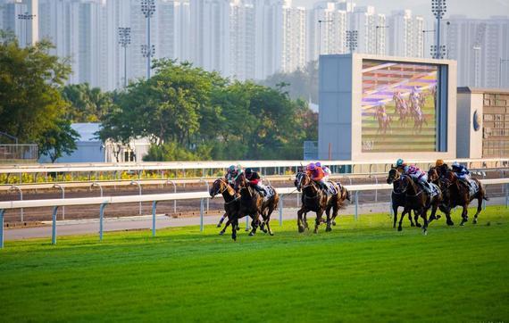 香港迎两场万万奖金等级国际一级赛