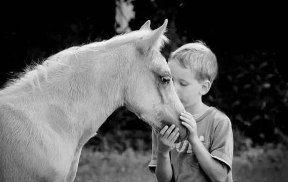 """""""聆听""""你的马"""