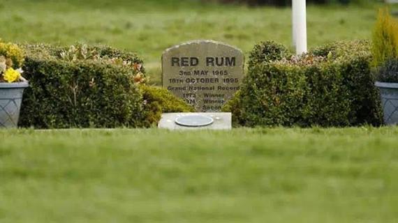 安翠赛马场终点旁红朗姆的墓地