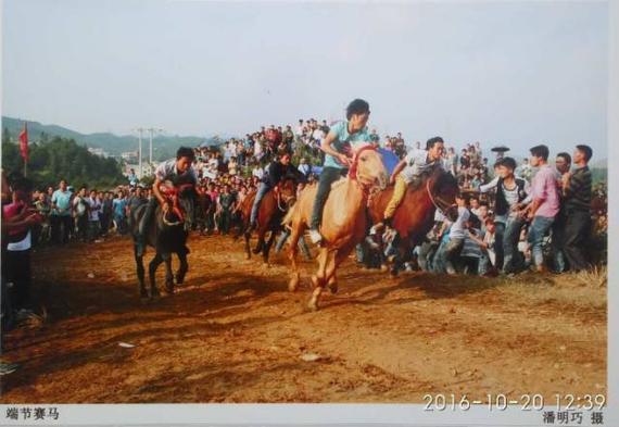 2016贵州民间赛马邀请赛 看水族端时节的爬坡赛马