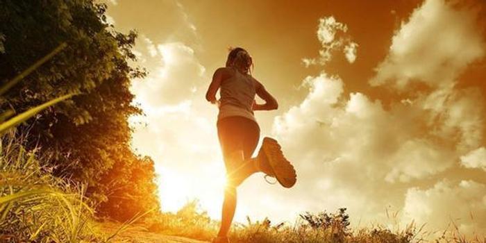 落地轻+小步幅+恢复 3要点令你远离跑步伤病