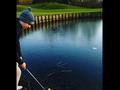 视频-正确示范!大神级球友演绎完美冰上高尔夫