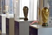 意大利足协举行奖杯展览会