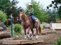 你有合格的教学用马吗?马匹调驯的两个重要指标