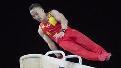 体操世锦赛肖若腾鞍马摘铜 翁浩遗憾获第六名