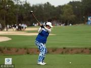 视频-冯珊珊LPGA总决赛首轮集锦 世界第一首秀