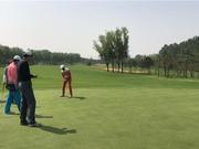高尔夫围棋北京山东平分秋色 总分3:3握手言和