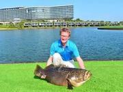 我的蓝湾故事:还记得蓝湾湖畔那条70斤的大鱼吗?