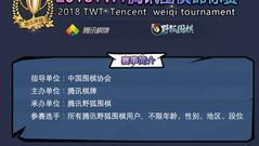 """回眸2017TWT精彩瞬间 """"一子千金""""火爆登场新章再启"""