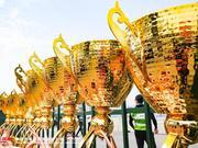 中国汽摩运动大会花絮:我与赛车谈了场恋爱